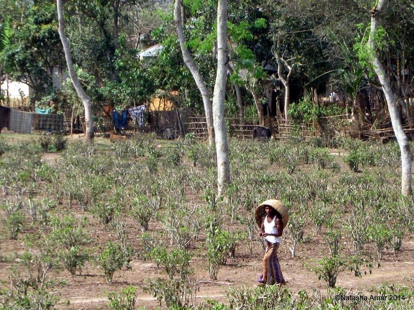 Passing through villages