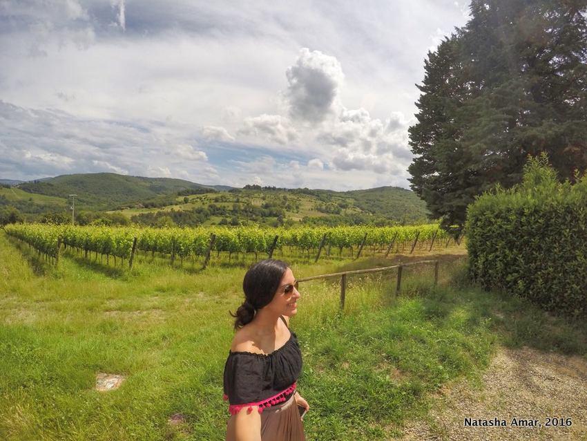 Tuscany wine trail