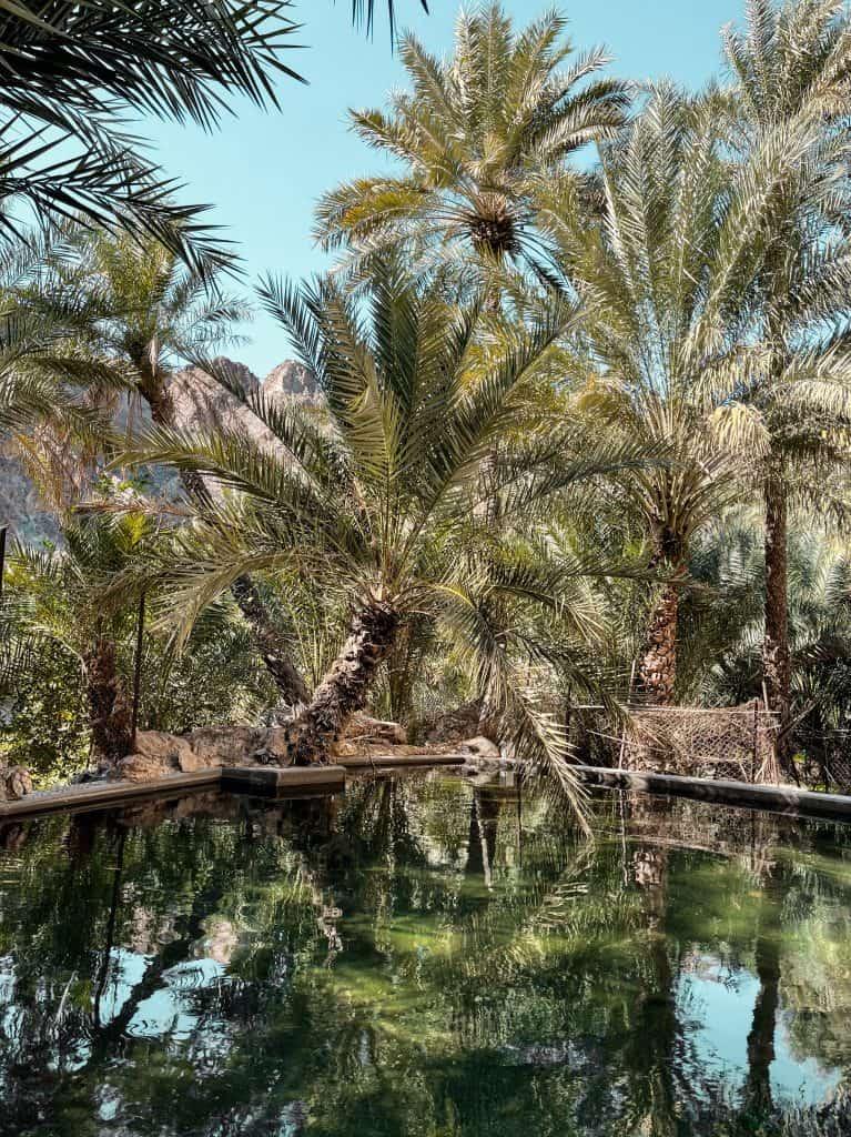 Freshwater reservoir in Wadi Shees
