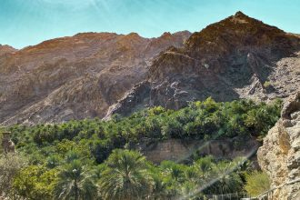 Views of palm trees and farms in the village on the Wadi Shees Nature Trail