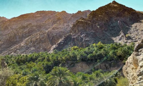 Wadi Shees: Explore Nature Trails and Go Kayaking on this Day Trip from Dubai