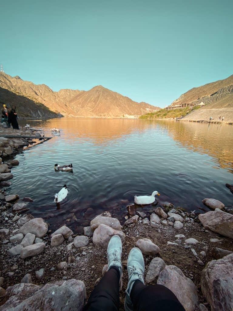 Ducks at Al rafisah Dam