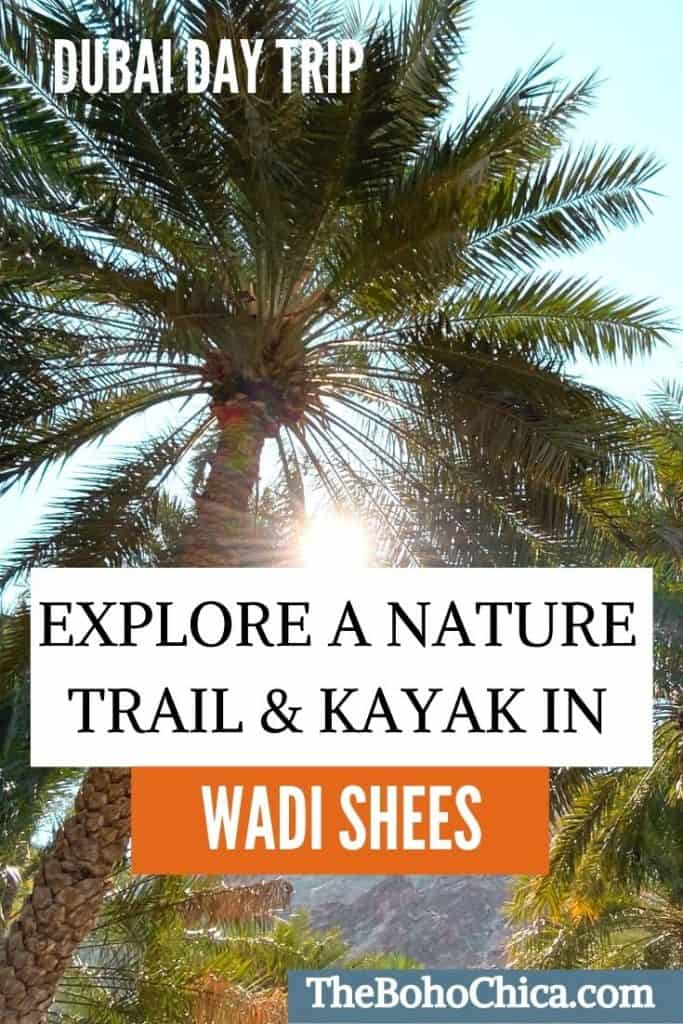 Located in the Hajar Mountains, Wadi Shees, a 90-minute drive from Dubai, offers an oasis nature trail and a chance to kayak in azure waters.
