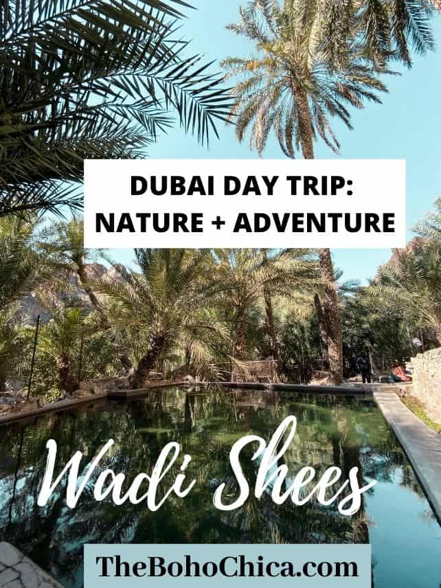 Wadi Shees: A Dubai Day Trip for Nature and Adventure